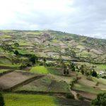 Agricultural landscape in Naubug, Ecuador